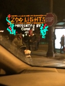Chicago Holidays...zoo lights