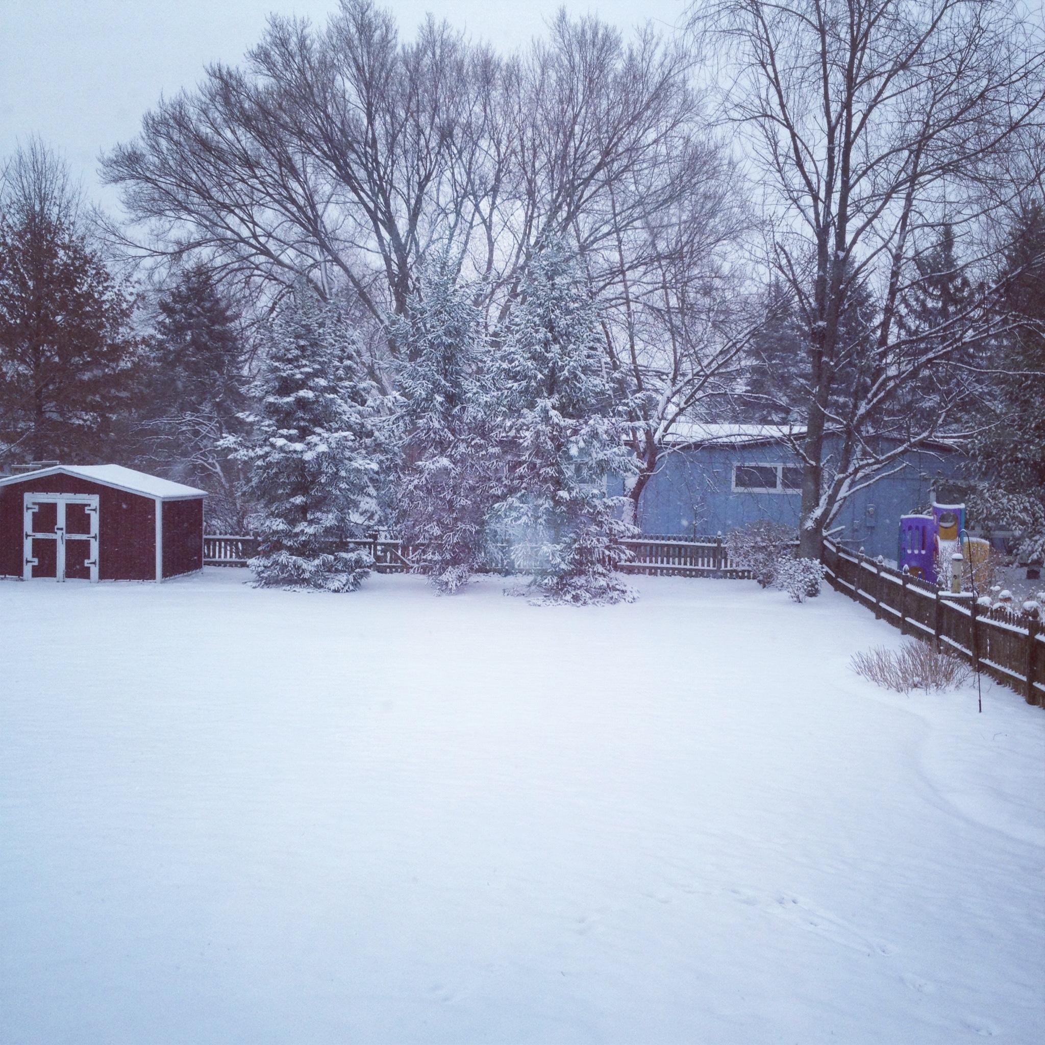 Snowy suburban day...