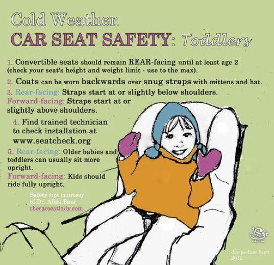 Car Seat Lady .com